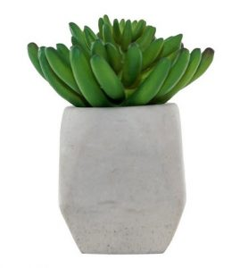 "Real Women Talk 2 purchase of Artificial Succulent Arrangement in Cement Pot Green 6"" - Lloyd & Hannah"
